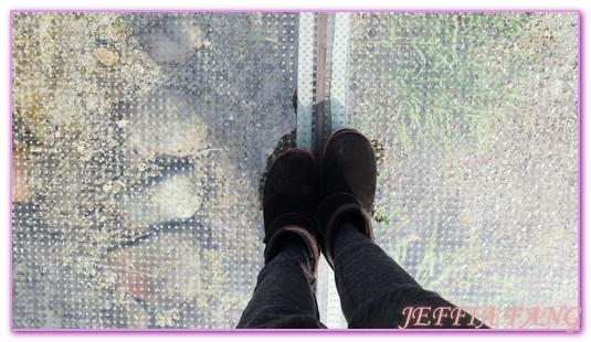台中,台灣旅遊,宮保第,霧峰,霧峰林家,霧峰林家宅園,霧峰林家宮保第園區,霧峰林家花園 @傑菲亞娃JEFFIA FANG