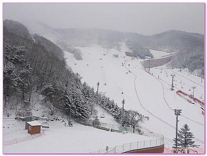 陽智PINE渡假村,韓國,韓國旅遊,韓國首爾自由行,飯店 @傑菲亞娃JEFFIA FANG