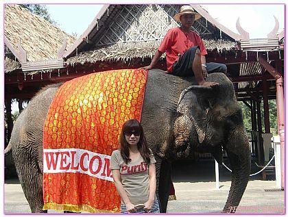 景點,泰國,泰國中部玫瑰花園,泰國旅遊,泰國曼谷自由行 @傑菲亞娃JEFFIA FANG