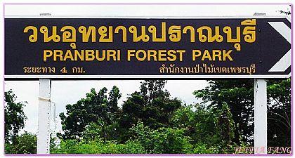 景點,泰國,泰國旅遊,泰國曼谷自由行,華欣紅樹林 @傑菲亞娃JEFFIA FANG