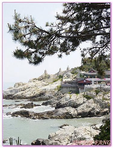 景點,釜山海東龍宮寺,韓國,韓國旅遊,韓國釜山自由行 @傑菲亞娃JEFFIA FANG