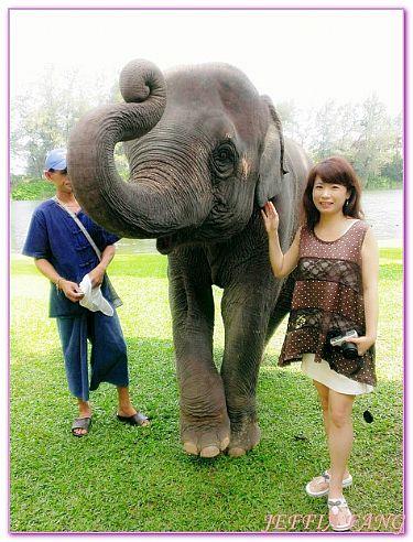 悅樁ANGSANA餐廳及BAR,普吉旅遊自由行,泰國,泰國旅遊,飯店 @傑菲亞娃JEFFIA FANG