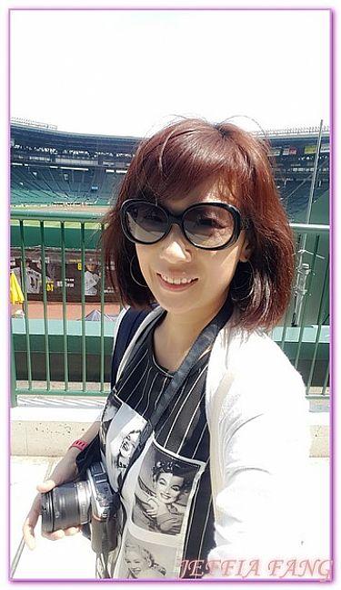 京阪神自由行,日本,日本旅遊,景點,阪神甲子園球場歷史博物館 @傑菲亞娃JEFFIA FANG