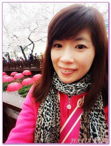 慶尚南道昌原市,景點,鎮海余佐川羅曼史橋,韓國,韓國旅遊 @傑菲亞娃JEFFIA FANG
