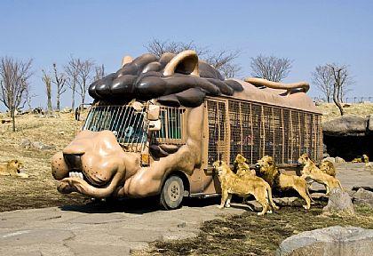 九州自然野生動物園,北九州大分縣,日本,日本旅遊,景點 @傑菲亞娃JEFFIA FANG