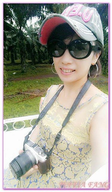 喀比SAFARI騎大象,景點,泰國,泰國南部喀比KRABI,泰國旅遊 @傑菲亞娃JEFFIA FANG