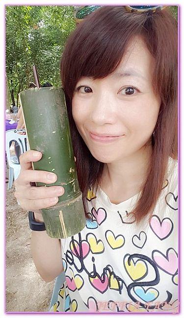 景點,泰國,泰國旅遊,泰國皇家計畫,泰國農業觀光推廣公園 @傑菲亞娃JEFFIA FANG