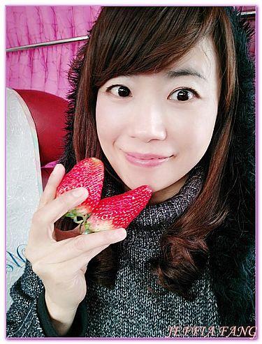 傳統市場/大賣場,全羅南道順天SUNCHEON,農貿市場五日市場,韓國,韓國旅遊 @傑菲亞娃JEFFIA FANG