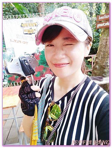 TREE TOP ADVENTURE象島,景點,泰國,泰國旅遊,象島 @傑菲亞娃JEFFIA FANG
