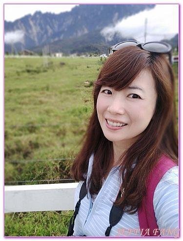 DESA CATTLE FARM,景點,沙巴旅遊,泰國旅遊,馬來西亞 @傑菲亞娃JEFFIA FANG