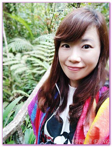 京那巴魯Kinabalu山,景點,沙巴旅遊,馬來西亞,馬來西亞旅遊 @傑菲亞娃JEFFIA FANG