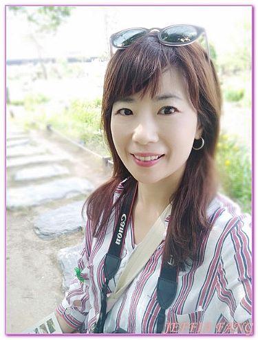 京畿道楊平,景點,洗美苑兩水頭,韓國,韓國旅遊 @傑菲亞娃JEFFIA FANG