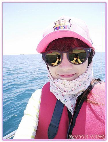 DISCOVERJEJU出海賞海豚,景點,濟州島,韓國,韓國旅遊 @傑菲亞娃JEFFIA FANG