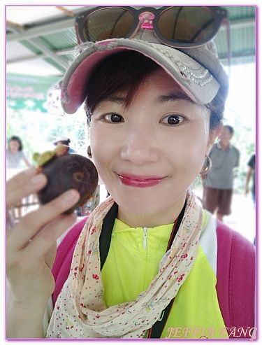 景點,泰國,泰國旅遊,達叻府TRAT,騎單車遊果園 @傑菲亞娃JEFFIA FANG
