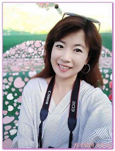 99階梯西皮廊壁畫村,慶尚南道統營,景點,韓國,韓國旅遊 @傑菲亞娃JEFFIA FANG