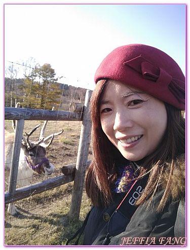 北海道旅遊,幌延町馴鹿牧場,日本,日本旅遊,景點 @傑菲亞娃JEFFIA FANG