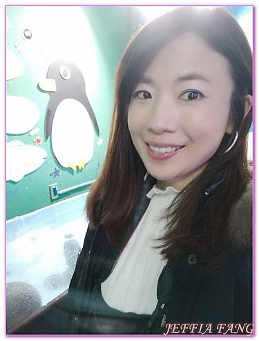 北海道,日本,日本旅遊,景點,稚內WAKKANAI寒流水族館 @傑菲亞娃JEFFIA FANG