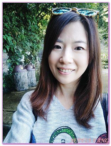 台灣,台灣旅遊,新北市烏來,景點,烏來雲仙樂園溫泉老街觀光台車 @傑菲亞娃JEFFIA FANG