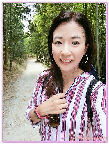全羅南道Jeollanam Do,景點,潭陽竹綠苑,韓國,韓國旅遊 @傑菲亞娃JEFFIA FANG