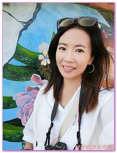 台灣,台灣旅遊,嘉義Chia Yi,布袋美好里繪畫村,景點 @傑菲亞娃JEFFIA FANG