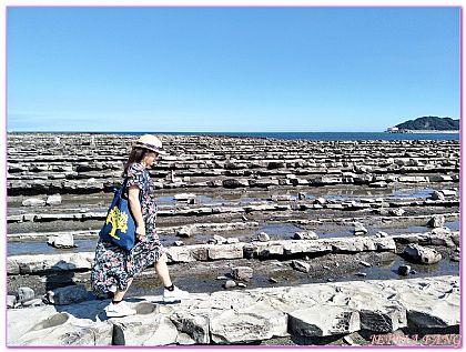 九州宮崎,日本,日本旅遊,景點,青島神社Aoshima鬼的洗衣板 @傑菲亞娃JEFFIA FANG