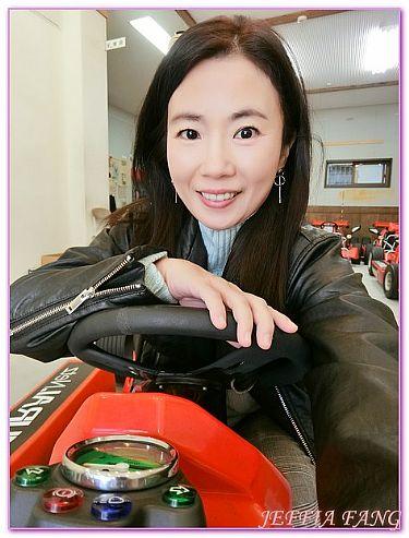 SamuraiKrat卡丁車遊東京,日本,日本旅遊,景點,東京 @傑菲亞娃JEFFIA FANG
