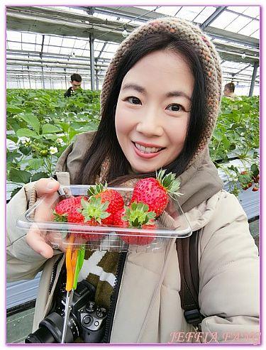 日本,日本旅遊,景點,栃木Tochigi,那須高原農園那須心樂園 @傑菲亞娃JEFFIA FANG
