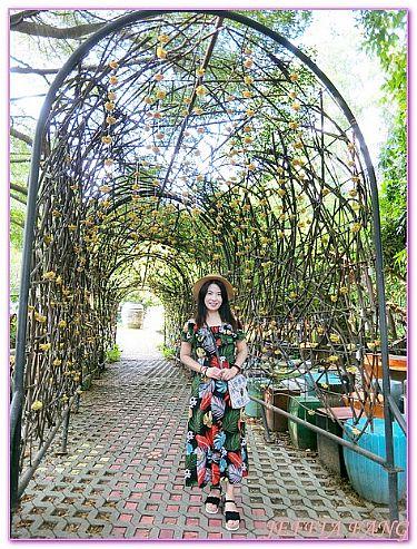TaoHongTai陶瓷觀光工廠,拉差汶里,景點,泰國,泰國旅遊 @傑菲亞娃JEFFIA FANG