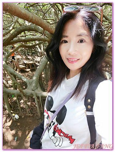 吉安瓜遺址區+龍玉晃森林保護區,景點,芹苴,越南,越南旅遊 @傑菲亞娃JEFFIA FANG