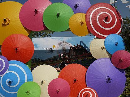 景點,泰國,泰國清邁旅遊,清邁自由行,清邁花園博覽會 @傑菲亞娃JEFFIA FANG